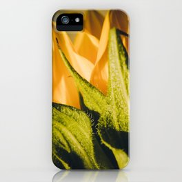 Sunflower (2) iPhone Case