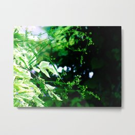 at the end Metal Print