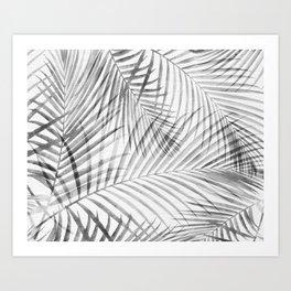 Black and White Tropical Palms Art Print