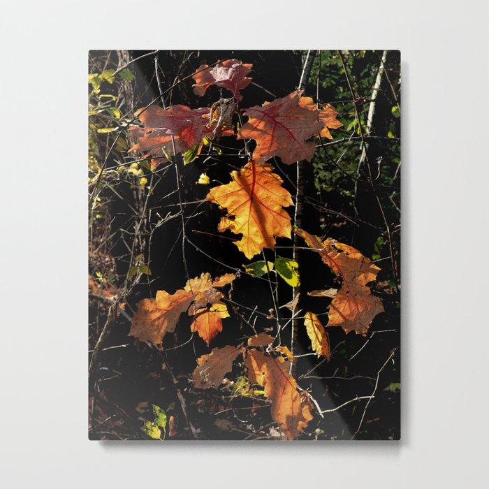 Autumn Poetry Metal Print