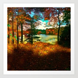 Trees and Shadows in New England Art Print