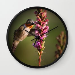 Hummingbird and flower Wall Clock