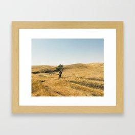 Californian Central Valley Framed Art Print
