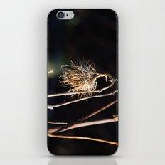 The Burr iPhone & iPod Skin