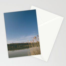 One-Eyed Octopus Photography Stationery Cards