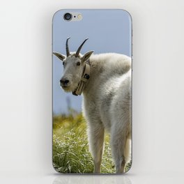 The Ups and Downs of Being a Mountain Goat No. 1 iPhone Skin