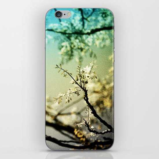 Caramel iPhone & iPod Skin