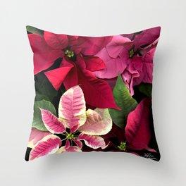 Colorful Christmas Poinsettias, Scanography Throw Pillow