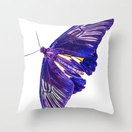 Troides helena watercolor Throw Pillow