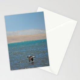 Paracas, Peru  Stationery Cards
