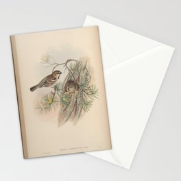 passer ammodendri17 Stationery Cards