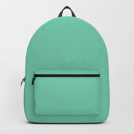 Solid Lucite Green Color Backpack