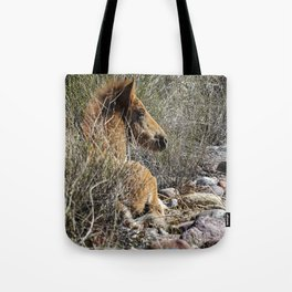 Salt River Foal Finding A Spot to Rest Tote Bag