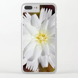White Petals in the Desert by Reay of Light Photography Clear iPhone Case