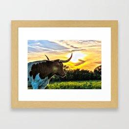 Illuminated Longhorn Sunset Framed Art Print