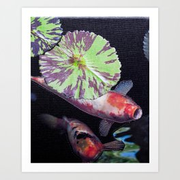Under The Lily Pad Art Print