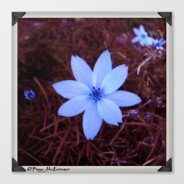 Shambhala Flower White 1a - Scrap Canvas Print