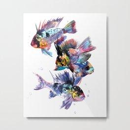 Cichlid Ram Aquarium Sih art Metal Print