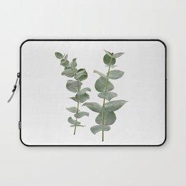 Eucalyptus Branches II Laptop Sleeve