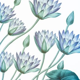 Floor Pillow - Water Lily Blue - Wheimay