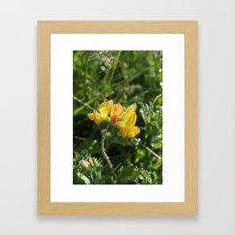 Gul blomst Framed Art Print