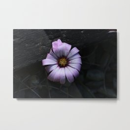 Your purple reflexion Metal Print