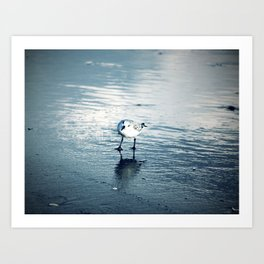 Greetings, Earthling, Blue wash beach, sea birds, wet sand Art Print