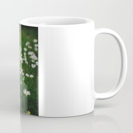 Сamomile Coffee Mug
