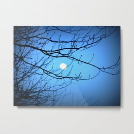 Moonlight at Dusk Metal Print