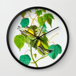 Hemlock Warbler Bird Wall Clock