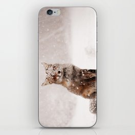 Fairytale Fox _ Red Fox in a Snow Storm iPhone Skin
