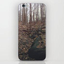 Hike iPhone Skin
