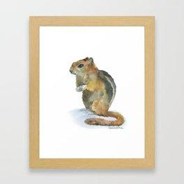 Chipmunk Watercolor Painting Framed Art Print