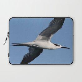 Sandwich Tern In Flight Vector Laptop Sleeve