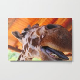 Hungry Giraffe Metal Print