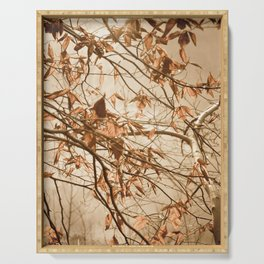 Aged Winter Leaves Botanical / Nature Photograph Serving Tray