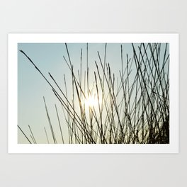sunday afternoon Art Print