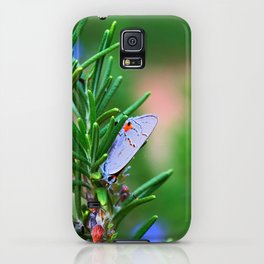 Eastern Tailed-Blue iPhone Case