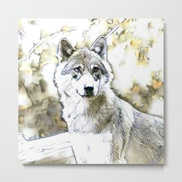 fascinating altered animals -Wolf Metal Print
