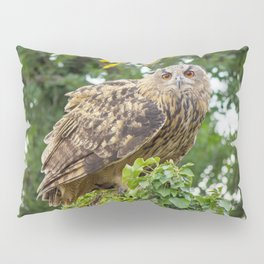 The owl is watching you Pillow Sham