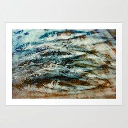 Sardines 3 Art Print