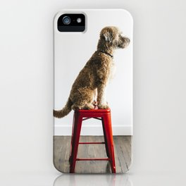 Soft-Coated Wheaten Terrier iPhone Case