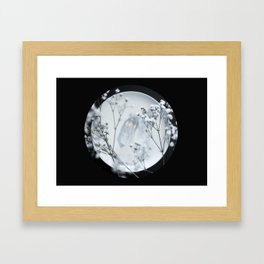 Silver Kiss II  Framed Art Print