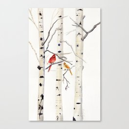 Birch Trees and Cardinal Canvas Print