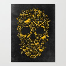 Skull Butterfly 2 Canvas Print