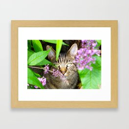 Master of Disguise Framed Art Print