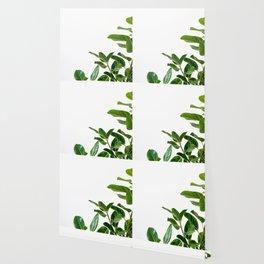 Minimalist Mid Century Abstract Houseplant Green Leaves Fig Tree Wallpaper