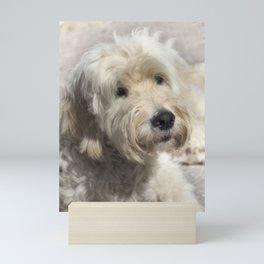 Dog Goldendoodle Golden Doodle Mini Art Print