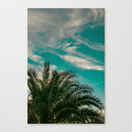 Palms on Turquoise - II Canvas Print