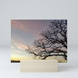 Subtle savanna sunset - Pheasant Branch Conservancy Mini Art Print